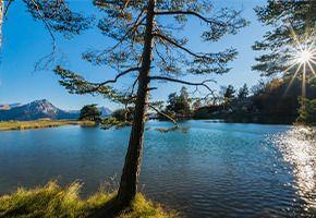 Lac St Apollinaire - Réallon.jpg